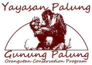 logo YP