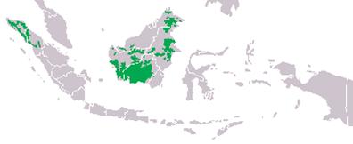 Peta sebaran orangutan Kalimantan dan sumatera