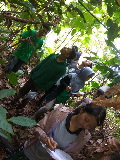 Saat melakukan praktek survei satwa. Foto dok. Yayasan Palung