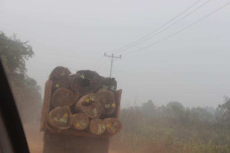 kayu log yang di angkut (milik Perusahaan)