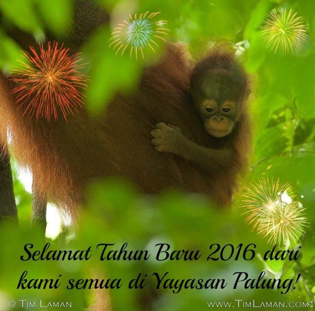 Ucapan Selamat Tahun Baru 2015
