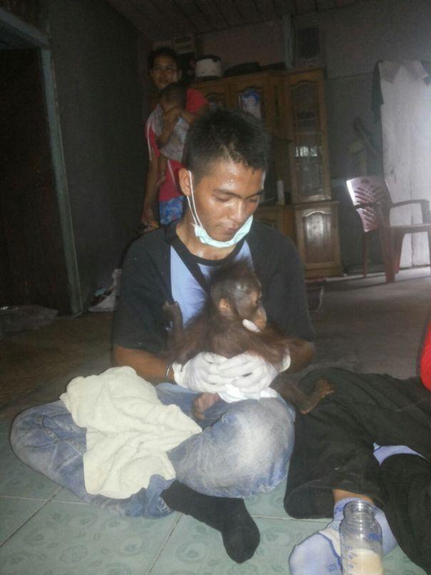 Rescue OU di Jelai Hulu (2)