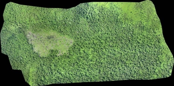 foto-survei-drone-3