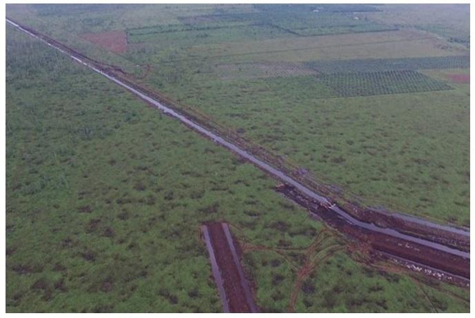 Pembangunan kanal di Sungai Putri mengancam habitat orangutan dan rentan kebakaran lahan. foto capture via BBC Indonesia.jpg