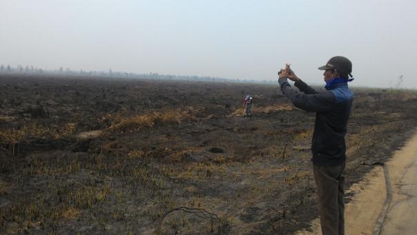 Kebakaran hutan dan lahan yg terjadi di Desa Pelang, Ketapang, Kalbar tahun 2015.