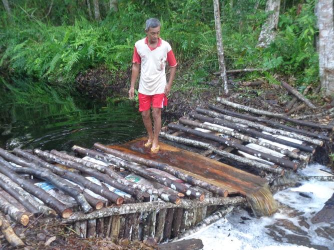 Pembuatan sekat kanal sebagai salah satu cara agar lahan gambut tetap basah untuk mencegah Kebakaran hutan dan lahan. Foto dok. Yayasan Palung.jpg