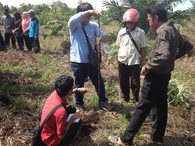 Turun lapangan atau praktek lapangan saat pelatihan, melihat dan mengukur kedalaman gambut. Foto dok. Yayasan Palung.jpg