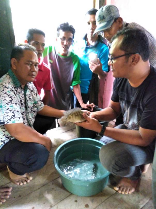 Peserta terlihat serius ketika mendengarkan penjelasan dari narasumber tentang budidaya ikan air tawar dan air payau. Foto dok. A. Samad, YP