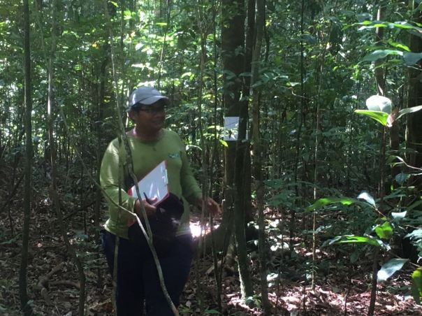 Ujian Sensus Satwa Field Course di Gunung Palung
