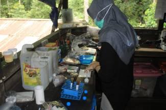 Isma saat melakukan pengecekan sampel feses orangutan di laboratorium. Foto dok : Isma/Yayasan Palung