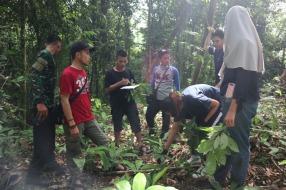 Belajar langsung di hutan tentang daun